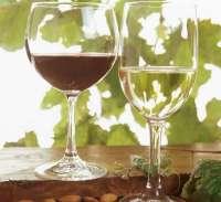 Este lunes arranca la penúltima semana de catas de vino en la sala de ascensores de la calle Descalzos