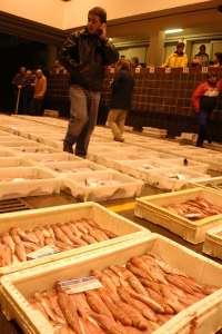 La alcaldesa de Isla pide al Ministerio que se reúne con el sector pesquero y ve la moratoria