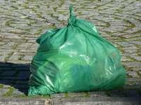 Las fiestas de San Roque dejan menos basura en los contenedores este año y más suciedad en las calles