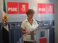 El PSOE pregunta a Carrón cómo tiene pensado