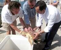 M.La Junta libera en Málaga tres tortugas rehabilitadas en el Crema