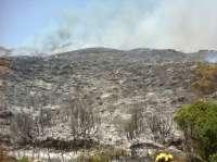 El efectivo del Infoca afectado en el incendio de Cortes pasará a planta en las próximas horas