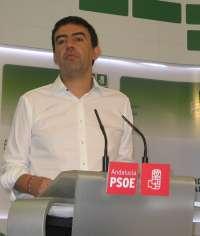 PSOE-A urge al Gobierno a preservar las renovables,