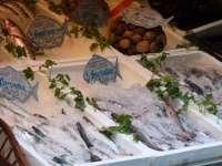 El sector recibe la subida del IVA con la petición unánime de que el pescado pase al tipo superreducido