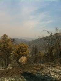 Sólo queda un foco activo en el incendio de la sierra oeste madrileña, el que afecta a Santa Catalina