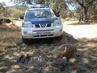 Detenido un furtivo por cazar un gamo en una finca de Ávila en veda y sin permiso del dueño de la finca