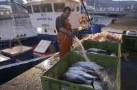 El Gobierno destina 2,8 millones a los afectados por la suspensión del acuerdo de pesca de la UE con Marruecos