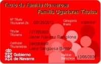 El Gobierno de Navarra emite un nuevo título de familias numerosas, que son 9.517 en la Comunidad foral