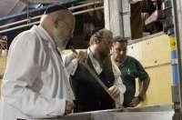 González Byass vendimia una partida de uva destinada a Tío Pepe kosher siguiendo el método tradicional judio
