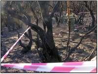 Ministerio de Medio Ambiente pide el Fondo Europeo de Solidaridad de la UE para cubrir daños del incendio de La Gomera
