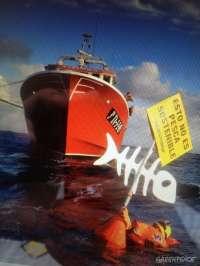 Greenpeace acusa a ministros europeos de anteponer intereses del sector a la recuperación de los recursos