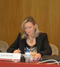 Del Olmo solicita una comparecencia en las Cortes para informar sobre la política de endeudamiento de 2012