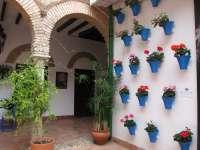 Los patios de Córdoba vuelven a abrir sus puertas desde este miércoles para celebrar la Navidad