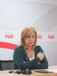Valenciano (PSOE) afirma que el PP debería querellarse contra Bárcenas pero