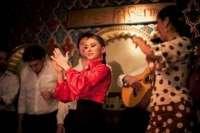 El flamenco es uno de los mayores motivos por el que los turistas vienen a España, según un estudio