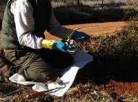 Propietarios de cotos piden a las CCAA que homologuen los métodos de control de predadores para evitar males a la caza