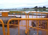La situación del río Azuer a su paso por Daimiel se mantiene estable y controlada