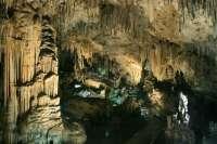 La Cueva de Nerja ofrece la próxima semana conciertos didácticos para escolares