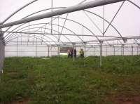 Organizaciones agrarias reclamarán este lunes al Gobierno
