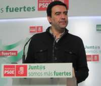 PSOE-A cree que la renuncia de la edil de Los Palacios por los trajes de flamenca