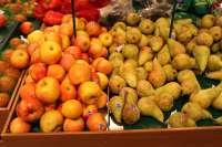 Cotejarán contrataciones y producción frutal en Lleida para detectar temporeros sin contrato