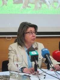 La Xunta apunta a dos líneas de investigación y dice que ambas remiten a depuradoras de fuera de Galicia