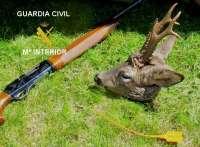 Denunciados en Burgos dos cazadores por colocación deficiente de precintos en corzos
