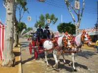 La Feria afronta sus últimos días con una ligera bajada de temperaturas y sin previsión de lluvias