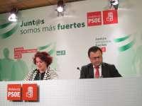 El PSOE presentará iniciativas en la Eurocámara para exigir la finalización del AVE según el proyecto inicial