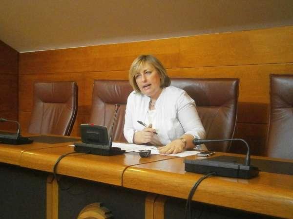 PSOE advierte que los recortes en violencia de género incrementan el riesgo de las mujeres y sus hijos