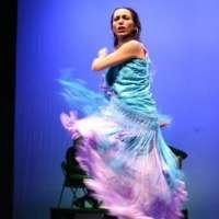 Cultura convoca las subvenciones para la promoción de festivales flamencos de pequeño y mediano formato para 2013