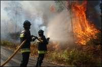 Extinguido un incendio y otro próximo a su control en Rodeiro (Pontevedra) en el entorno de Red Natura