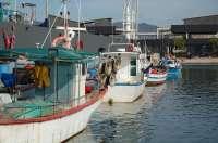 El Gobierno analiza con el sector pesquero del Golfo de Cádiz los cambios de modalidad y pesquería de cigala