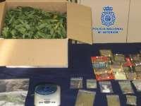 La Policía Nacional desmantela un invernadero de marihuana en una vivienda de Alfafar