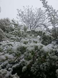 Alerta amarilla este lunes en Jaén, Granada y Almería por riesgo de nevadas