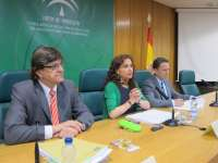 El nuevo mapa sanitario de Granada estará listo en 2014 con tres centros de alta complejidad