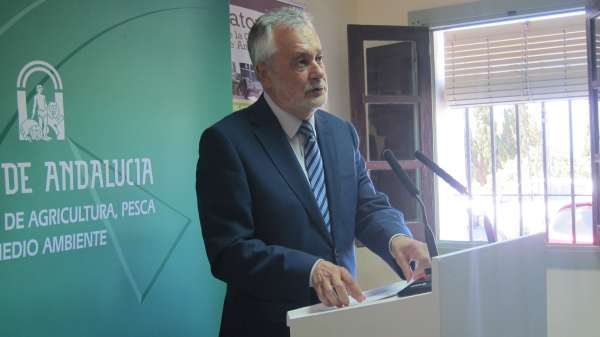 Griñán defiende que la línea Huelva-Zafra es