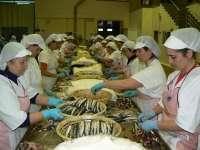 (Ampl) Bruselas propone 15.390 toneladas de TAC para España de anchoa en la Bahía de Vizcaya para 2013-2014