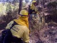 Gobernación decreta la preemergencia por riesgo máximo de incendios forestales en toda la Comunitat