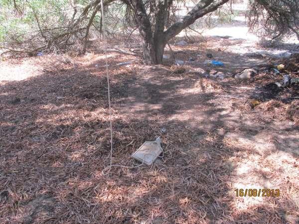 Detenido un menor 'in fraganti' acusado de intentar incendiar un paraje forestal de Mazagón