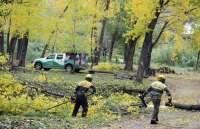 La Diputación pone sus brigadas forestales a disposición de los municipios para limpiar barrancos