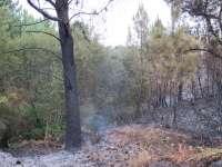 Sigue activo pero estabilizado el fuego en Ponte Caldelas (Pontevedra), donde ardieron 600 hectáreas