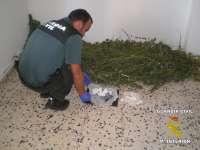 Una operación contra el tráfico de drogas en la provincia de Badajoz termina con tres detenidos