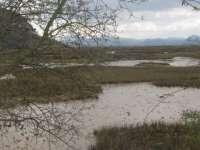 El Gobierno deberá incrementar en un millón de euros su aportación para el saneamiento de las marismas de Santoña