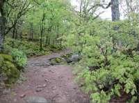 Las montañas, protagonistas de la II Semana de la Reserva Natural Garganta de los Infiernos
