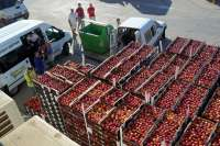 Sebastià Escarp releva a Felip Saló al frente de la cooperativa Fruits de Ponent