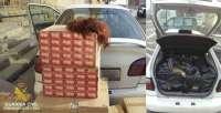 Interceptado en Lleida un contrabandista de tabaco que iba disfrazado con peluca