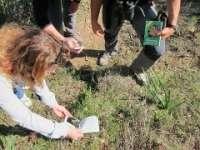 Amantes de la botánica estudiarán las orquídeas en una jornada en el entorno de Valverde Leganés (Badajoz)