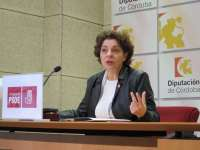 El PSOE quiere que Diputación preste a las mancomunidades los mismos servicios sin coste que da a ayuntamientos