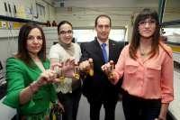 Una tesis de la UR identifica los marcadores que distinguen geográficamente los aceites de la DOP La Rioja